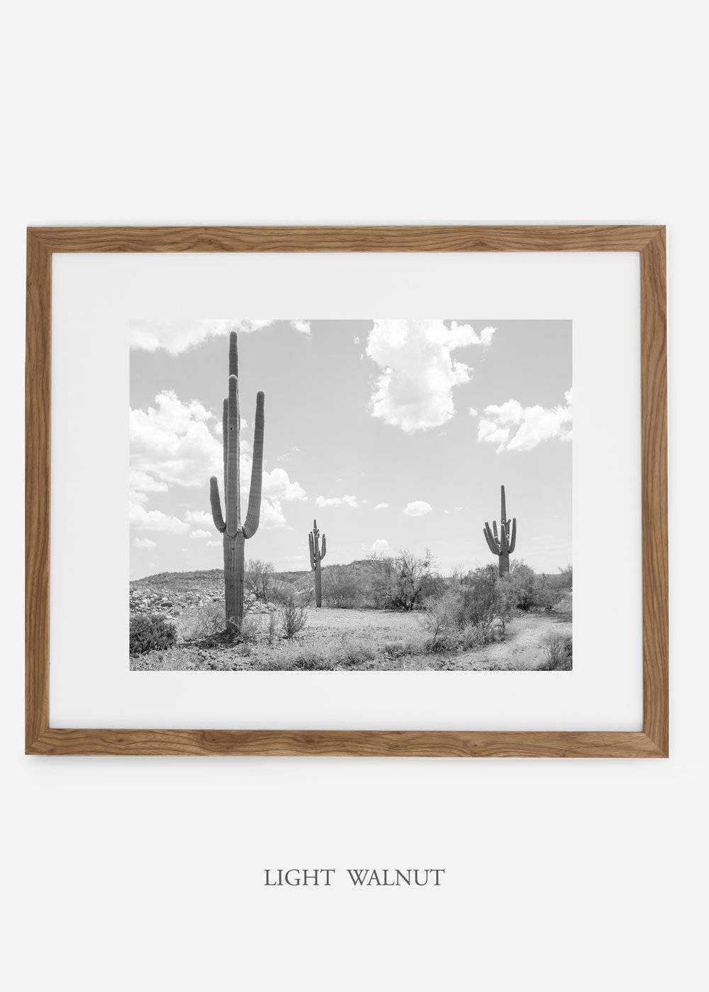 wildercalifornia_lightwalnutframe_threesaguaro_cactus_art_interiordesign.jpg