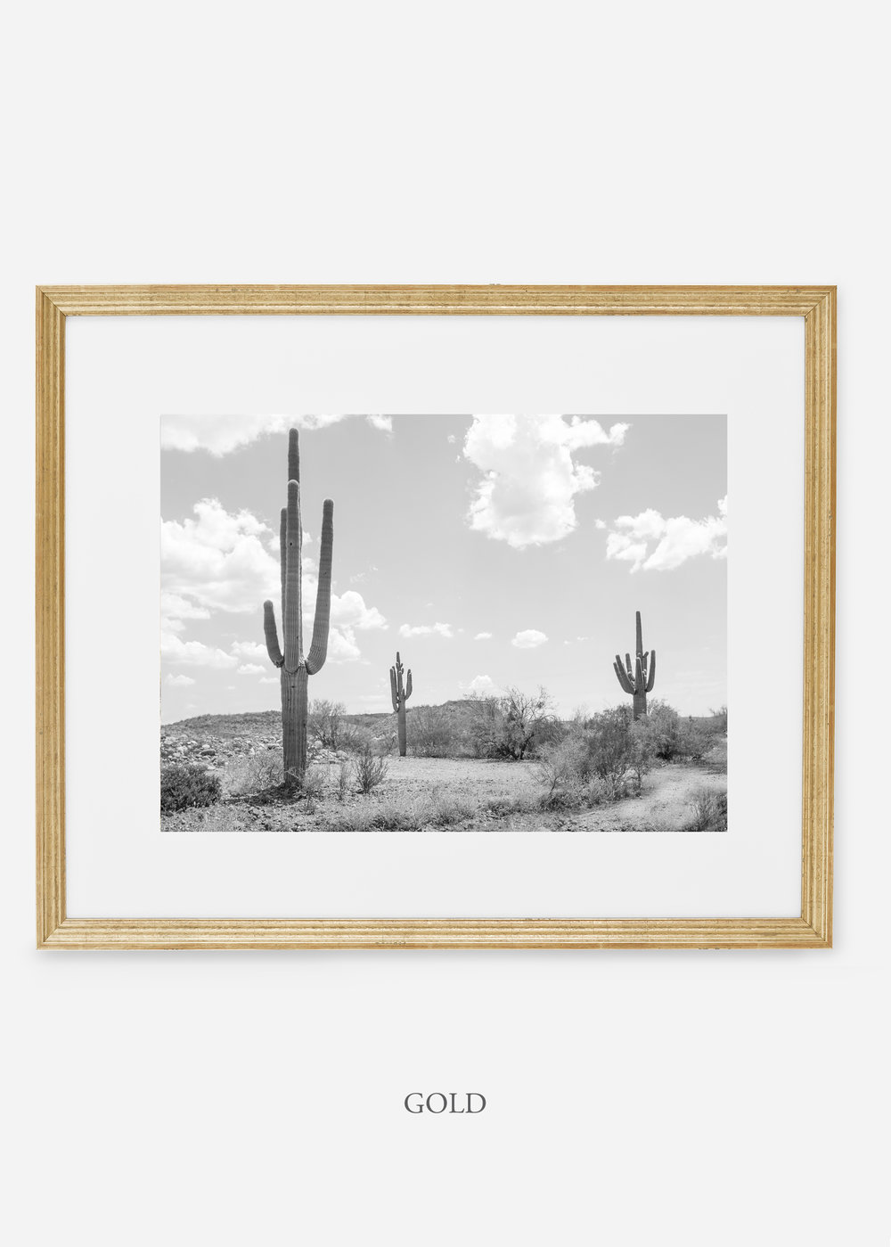 wildercalifornia_goldframe_threesaguaro_cactus_art_interiordesign.jpg
