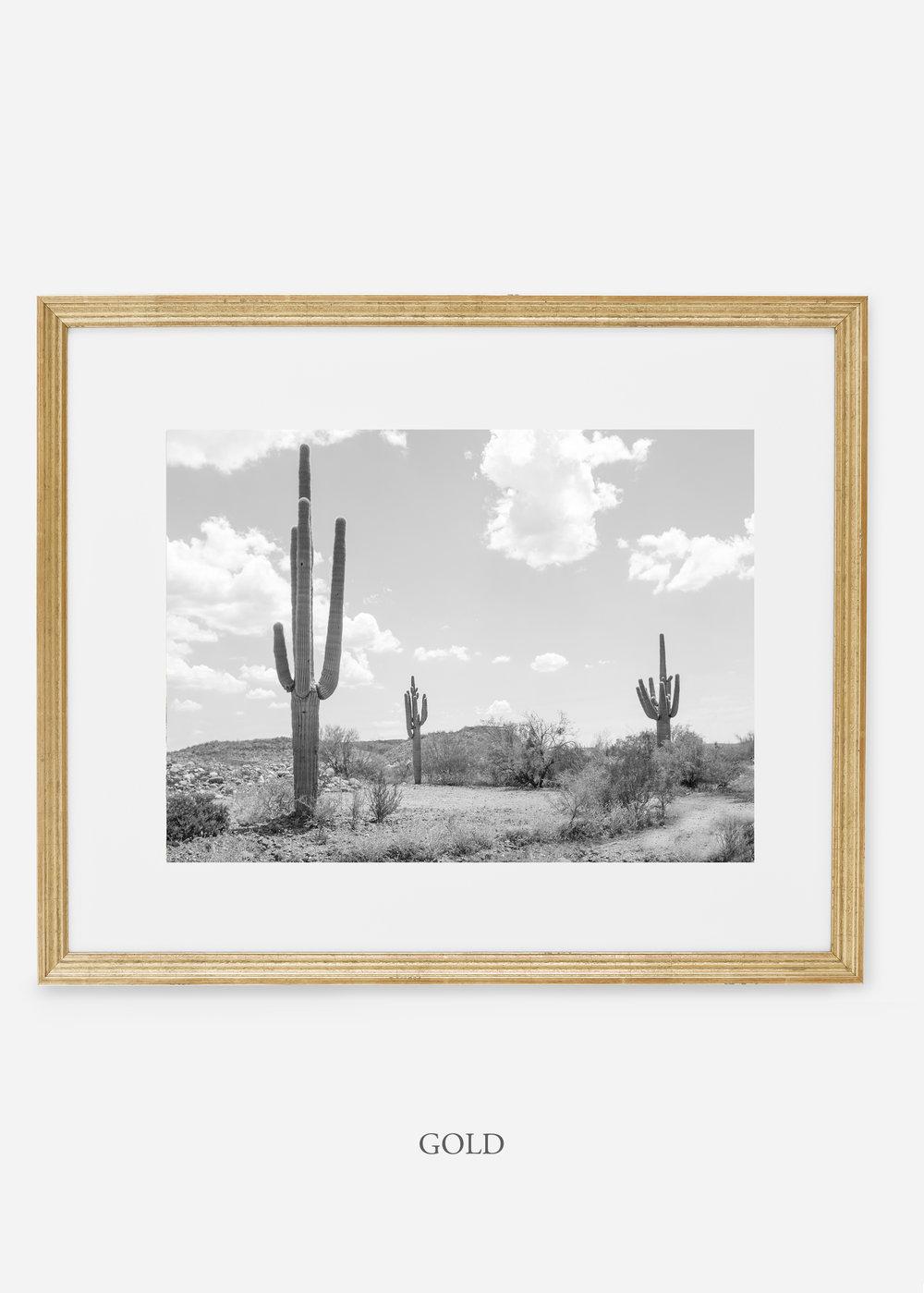 wildercalifornia_goldframe_threesaguaro_cactus_art_interiordesign.jpg