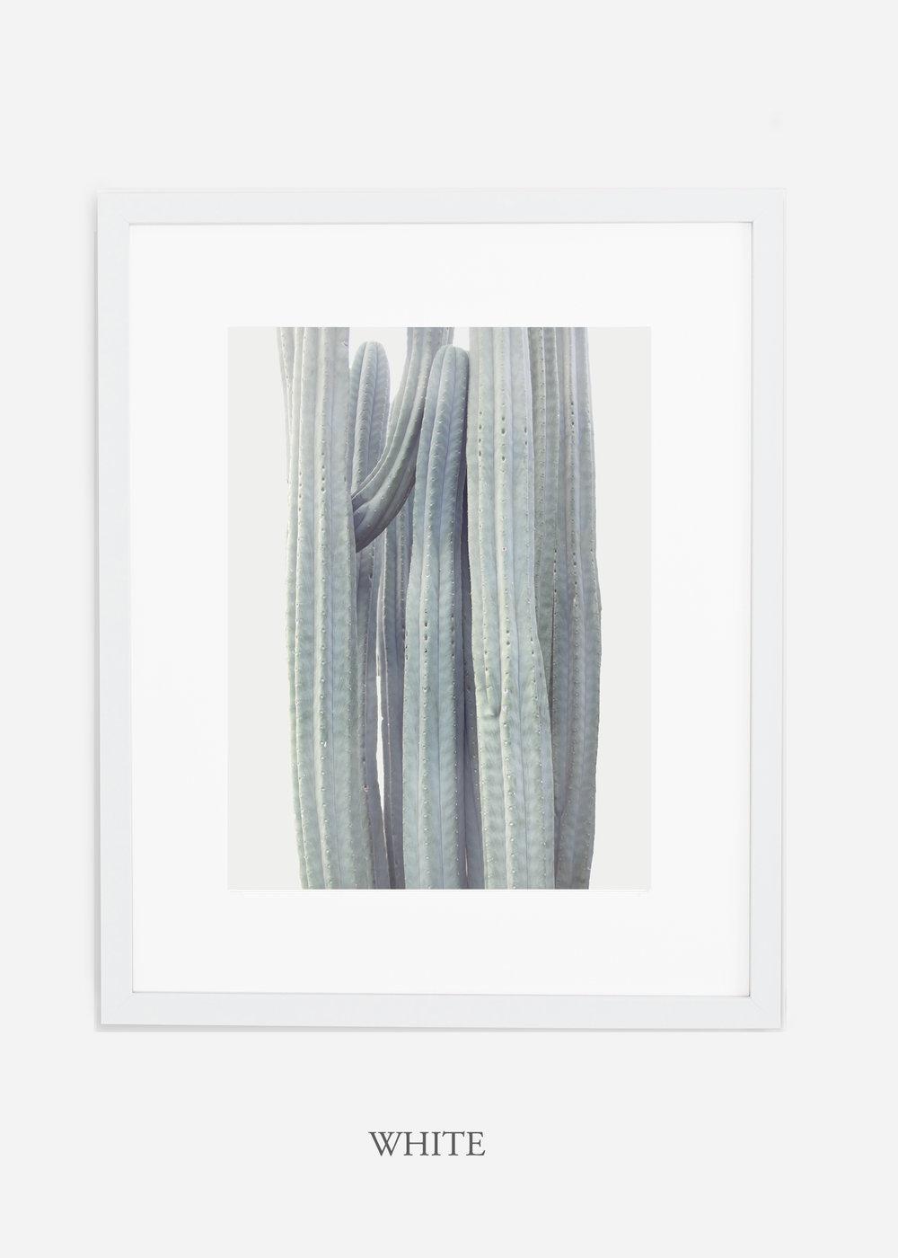 wildercalifornia_winterwhite_whiteframe_interiordesign_white_neutral_cactus_art_photography_large.jpg