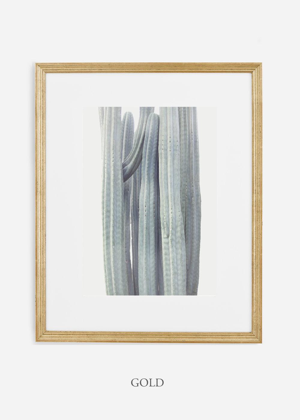 wildercalifornia_winterwhite_goldframe_interiordesign_white_neutral_cactus_art_photography_large.jpg