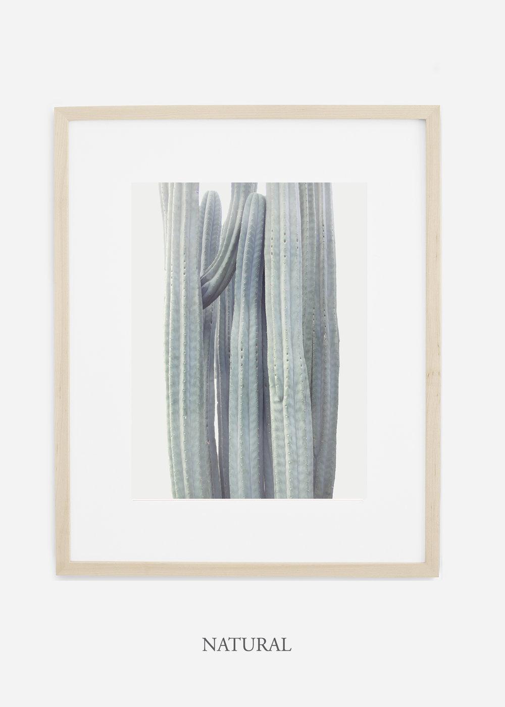 wildercalifornia_winterwhite_naturalframe_interiordesign_white_neutral_cactus_art_photography_large.jpg