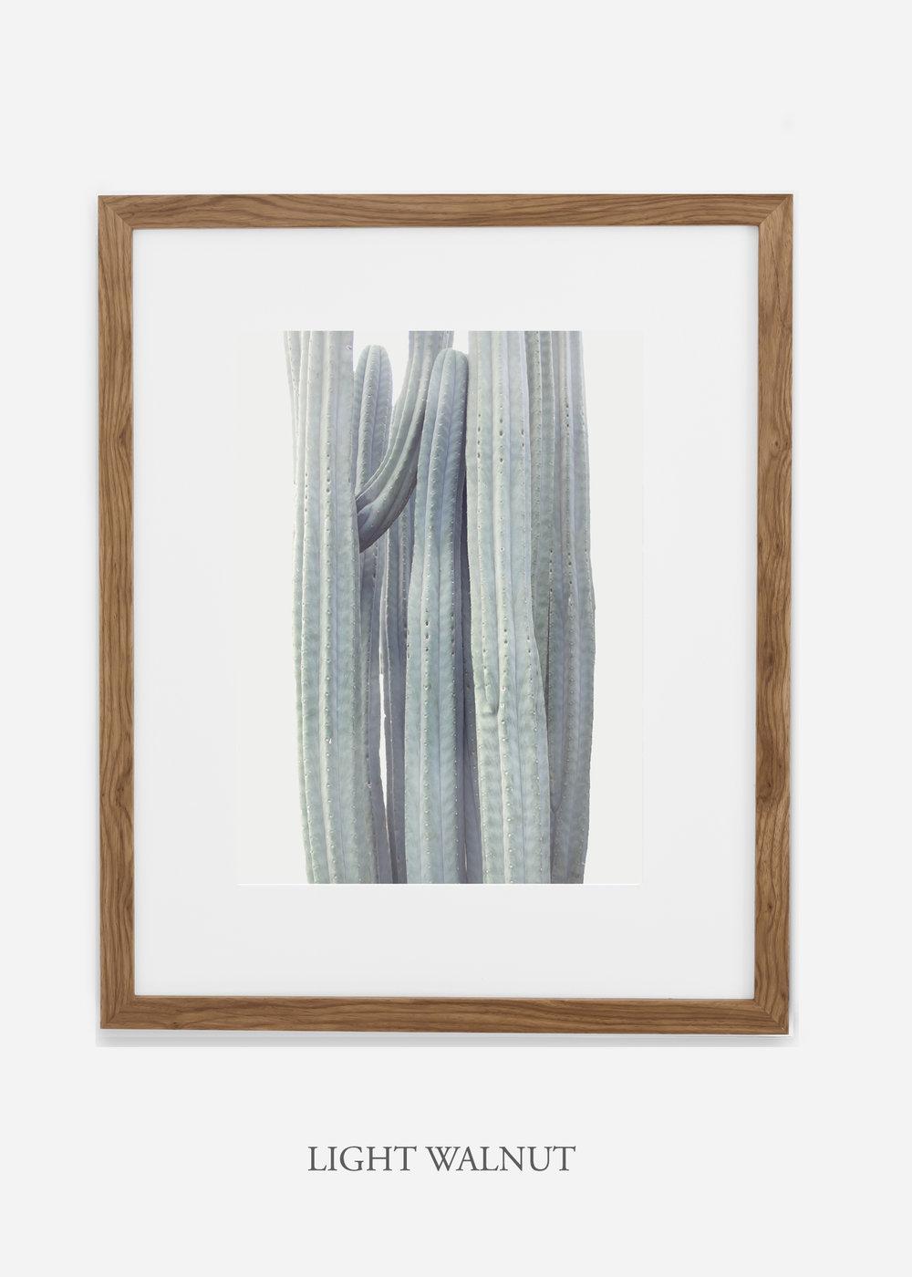 wildercalifornia_winterwhite_lightwalnutframe_interiordesign_white_neutral_cactus_art_photography_large.jpg