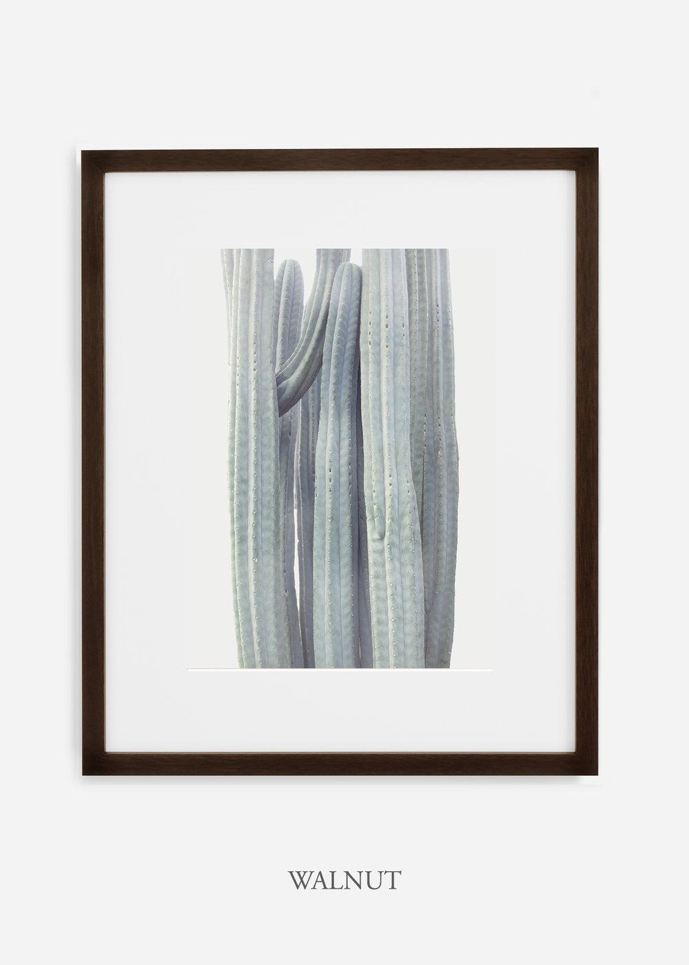 wildercalifornia_winterwhite_walnutframe_interiordesign_white_neutral_cactus_art_photography_large.jpg