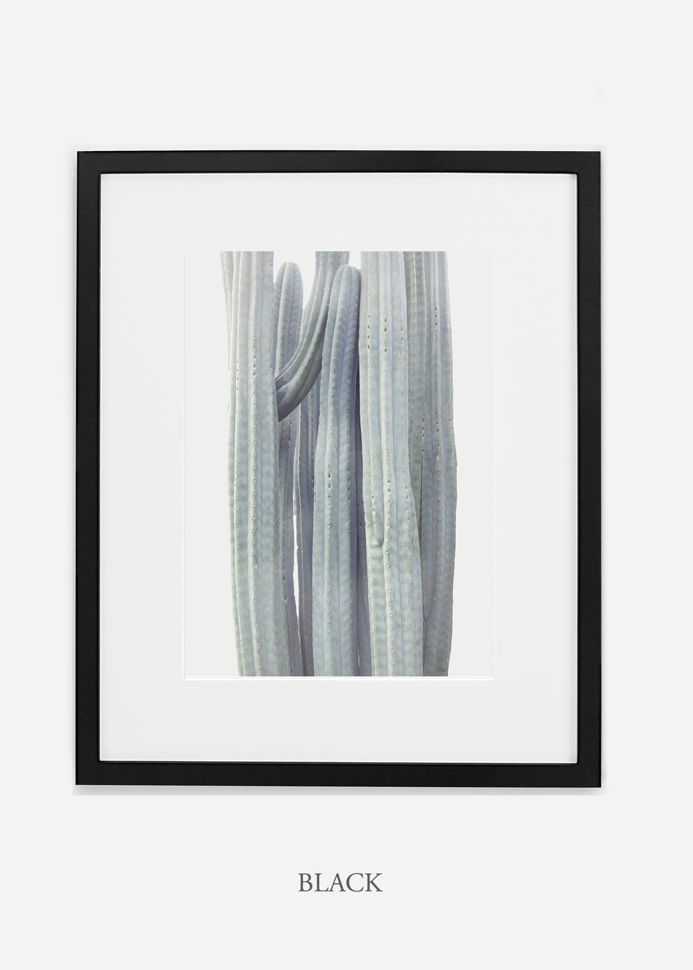 wildercalifornia_winterwhite_blackframe_interiordesign_white_neutral_cactus_art_photography_large.jpg