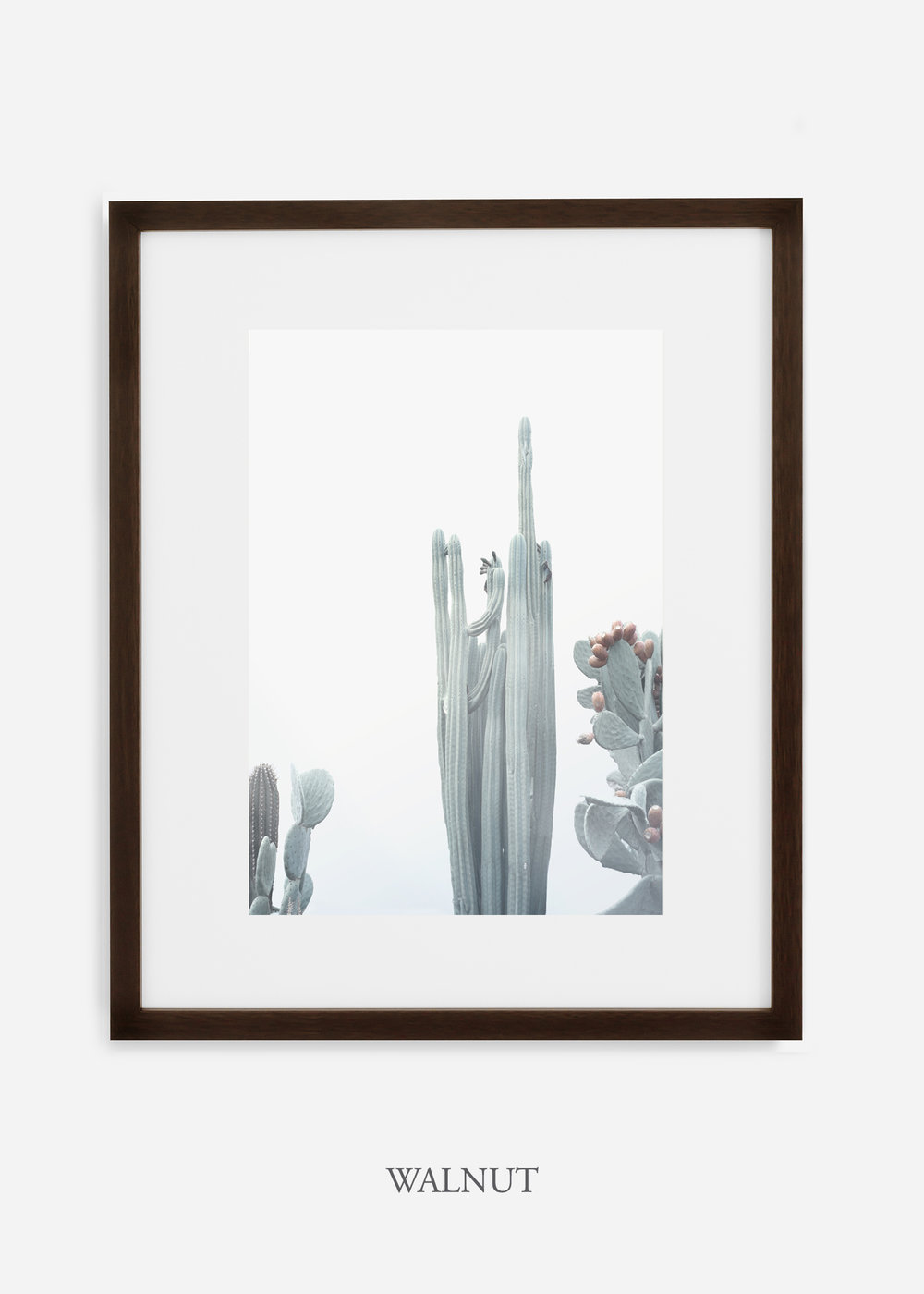 wildercalifornia_winterwhite_No.1_walnutframe_interiordesign_white_neutral_cactus_art_photography_large.jpg