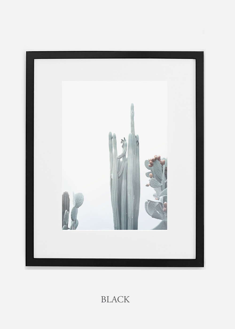 wildercalifornia_winterwhite_No.1_blackframe_interiordesign_white_neutral_cactus_art_photography_large.jpg