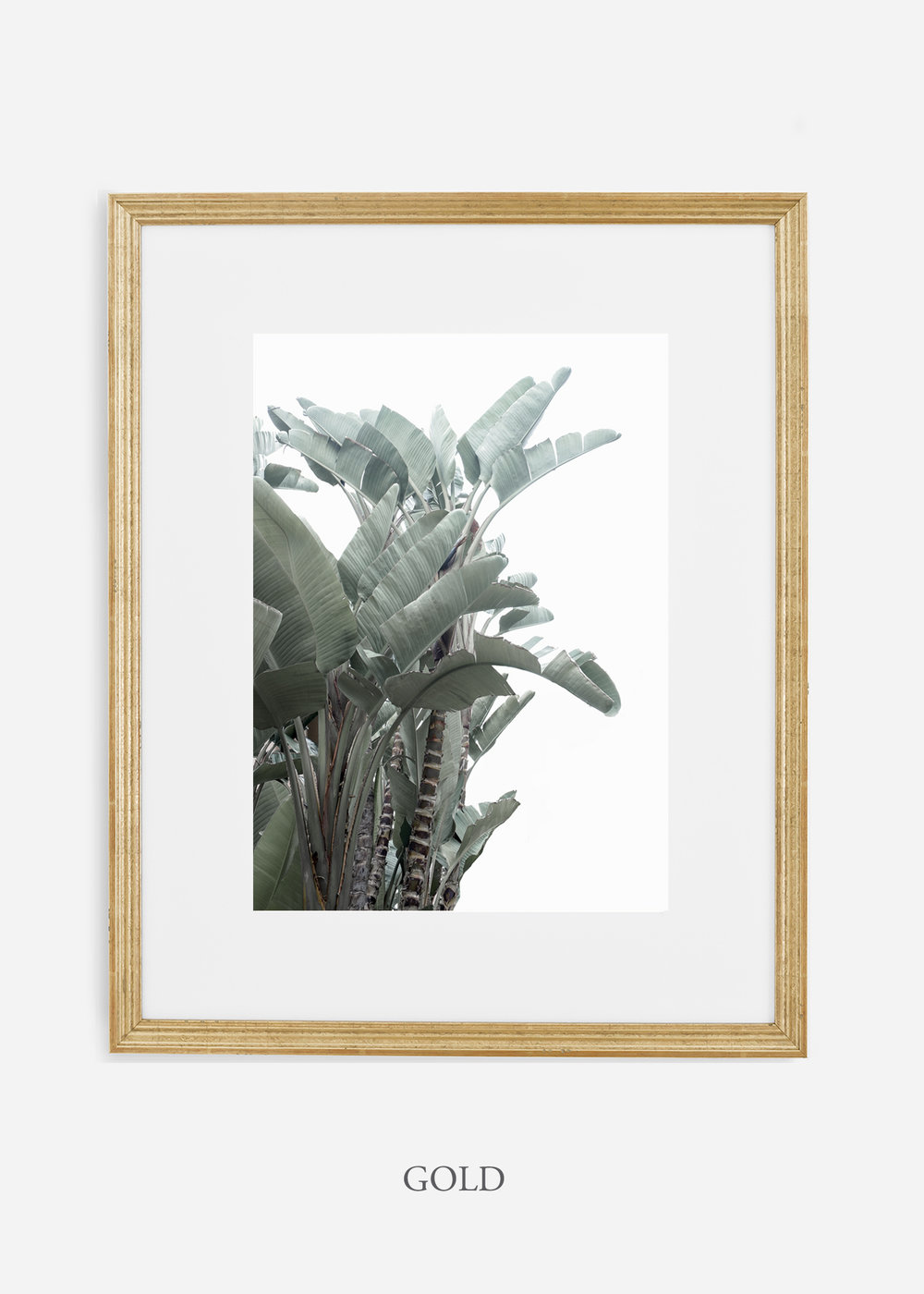wildercalifornia_goldframe_WinterWhite_BananaLeafNo.1_Tropical_LosAngeles_Art_HomeDecor_interiordesign_design.jpg