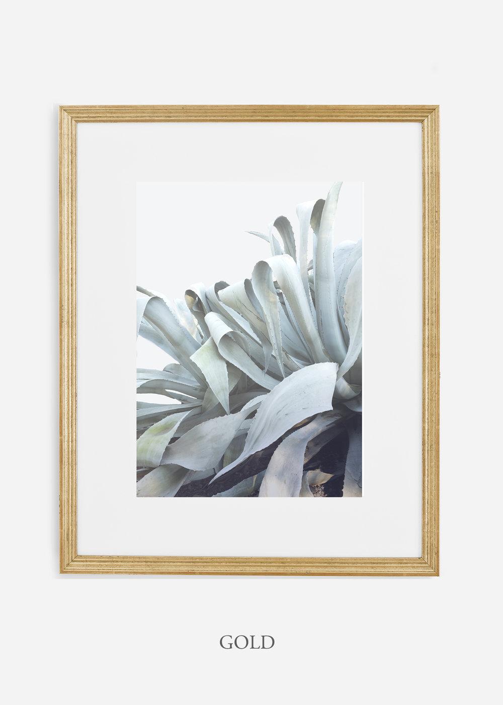 wildercalifornia_goldframe_WinterWhite_AgaveNo.2_Desert_LosAngeles_Art_HomeDecor_interiordesign_design.jpg