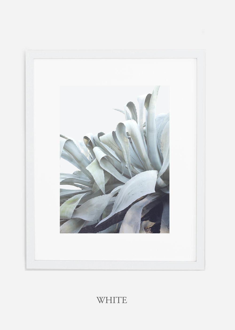 wildercalifornia_whiteframe_WinterWhite_AgaveNo.2_Desert_LosAngeles_Art_HomeDecor_interiordesign_design.jpg