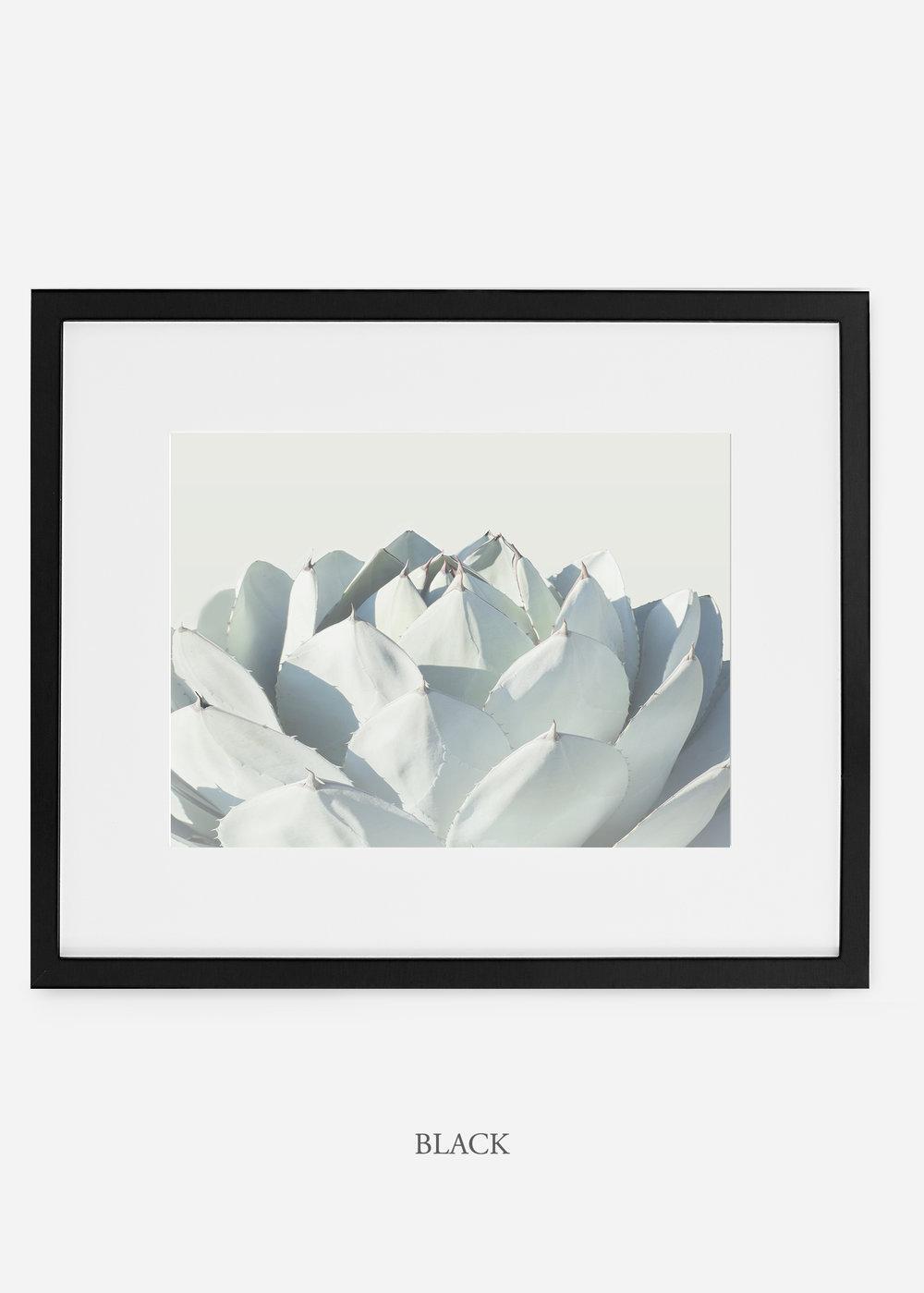 WilderCalifornia_blackframe_Cactus_Art_Photography_interiordesign_white_bohemian_neutral_photography_photo.jpg