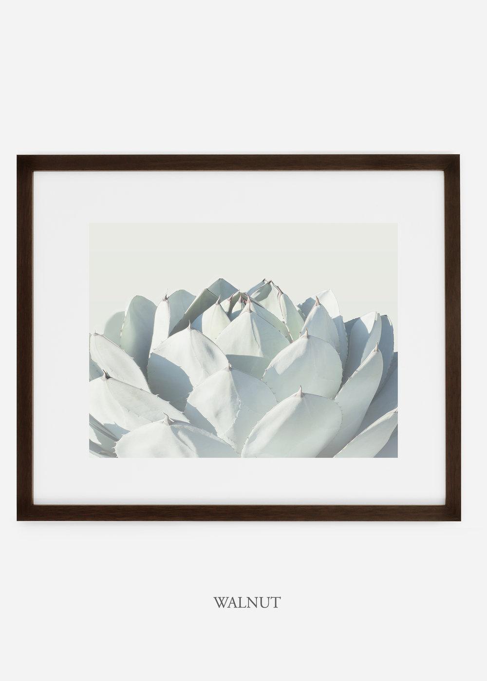 WilderCalifornia_walnutframe_Cactus_Art_Photography_interiordesign_white_bohemian_neutral_photography_photo.jpg