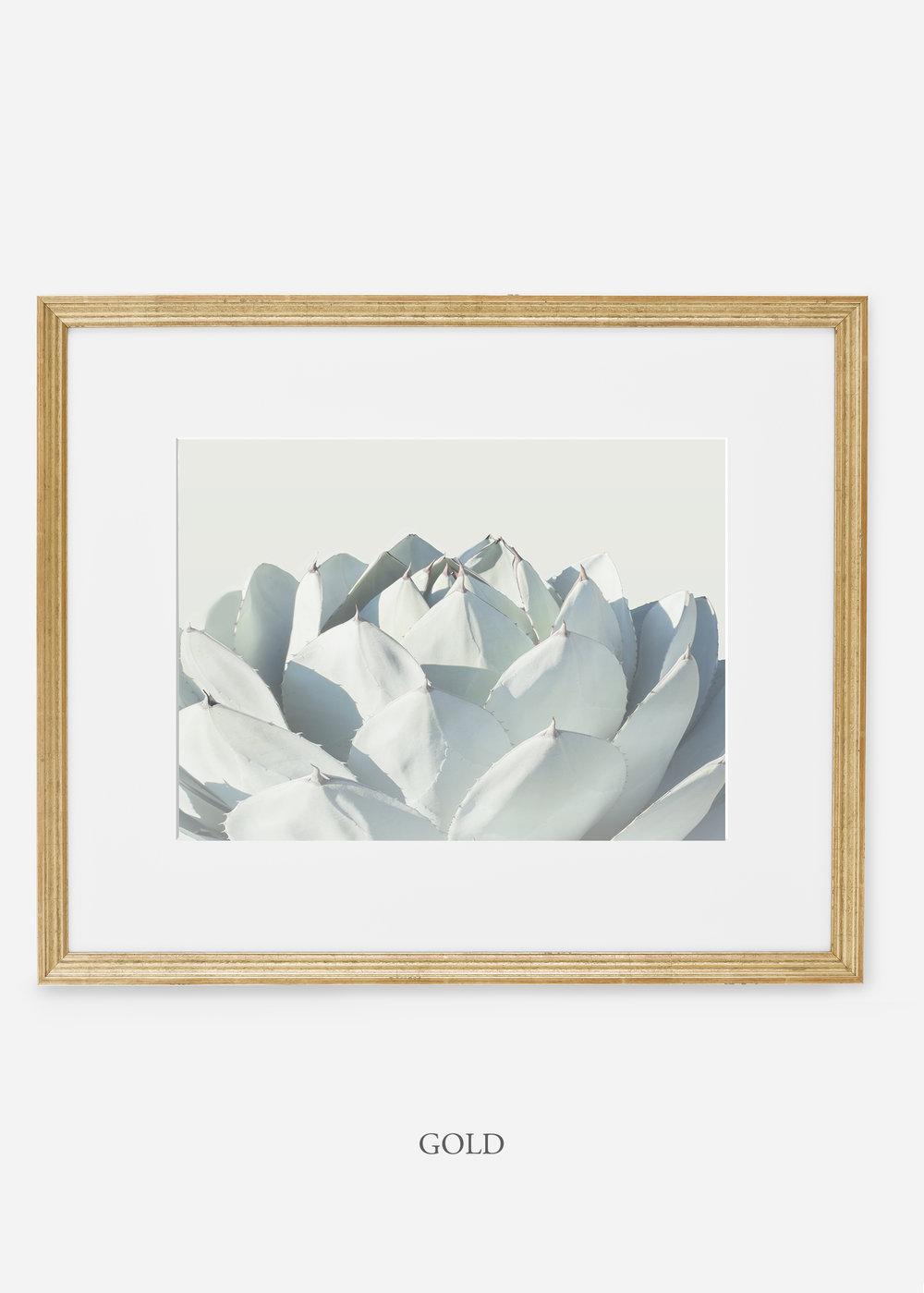 WilderCalifornia_goldframe_Cactus_Art_Photography_interiordesign_white_bohemian_neutral_photography_photo.jpg