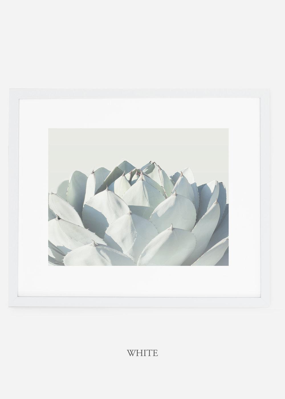 WilderCalifornia_whiteframe_Cactus_Art_Photography_interiordesign_white_bohemian_neutral_photography_photo.jpg