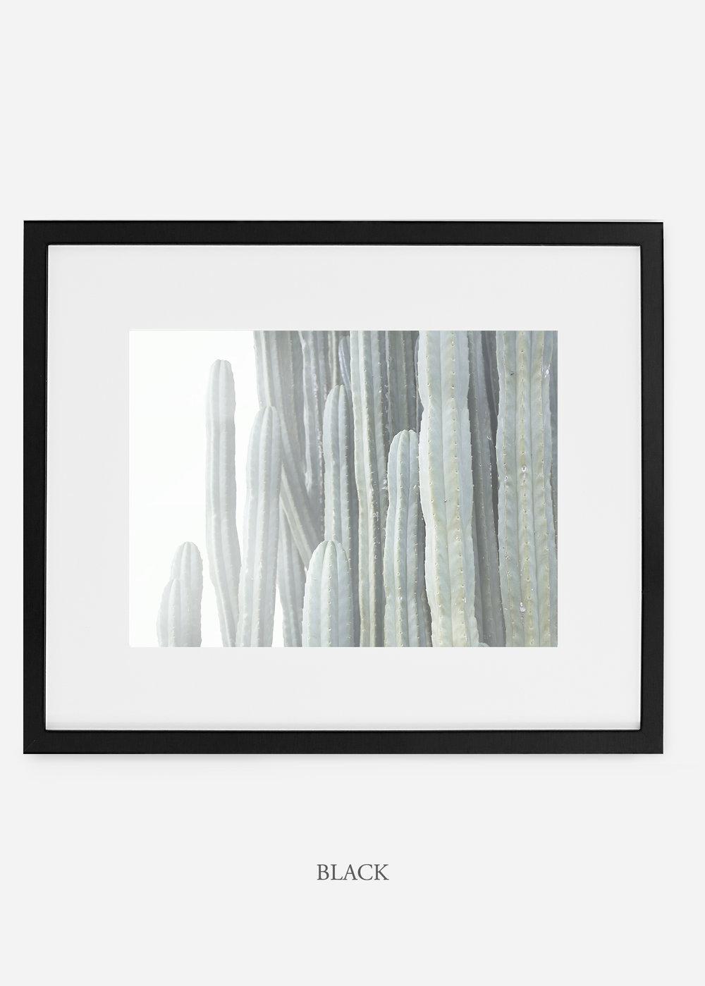 WilderCalifornia_blackframe__Cactus_Art_Photography_interiordesign_white_bohemian_neutral_photography_photo.jpg