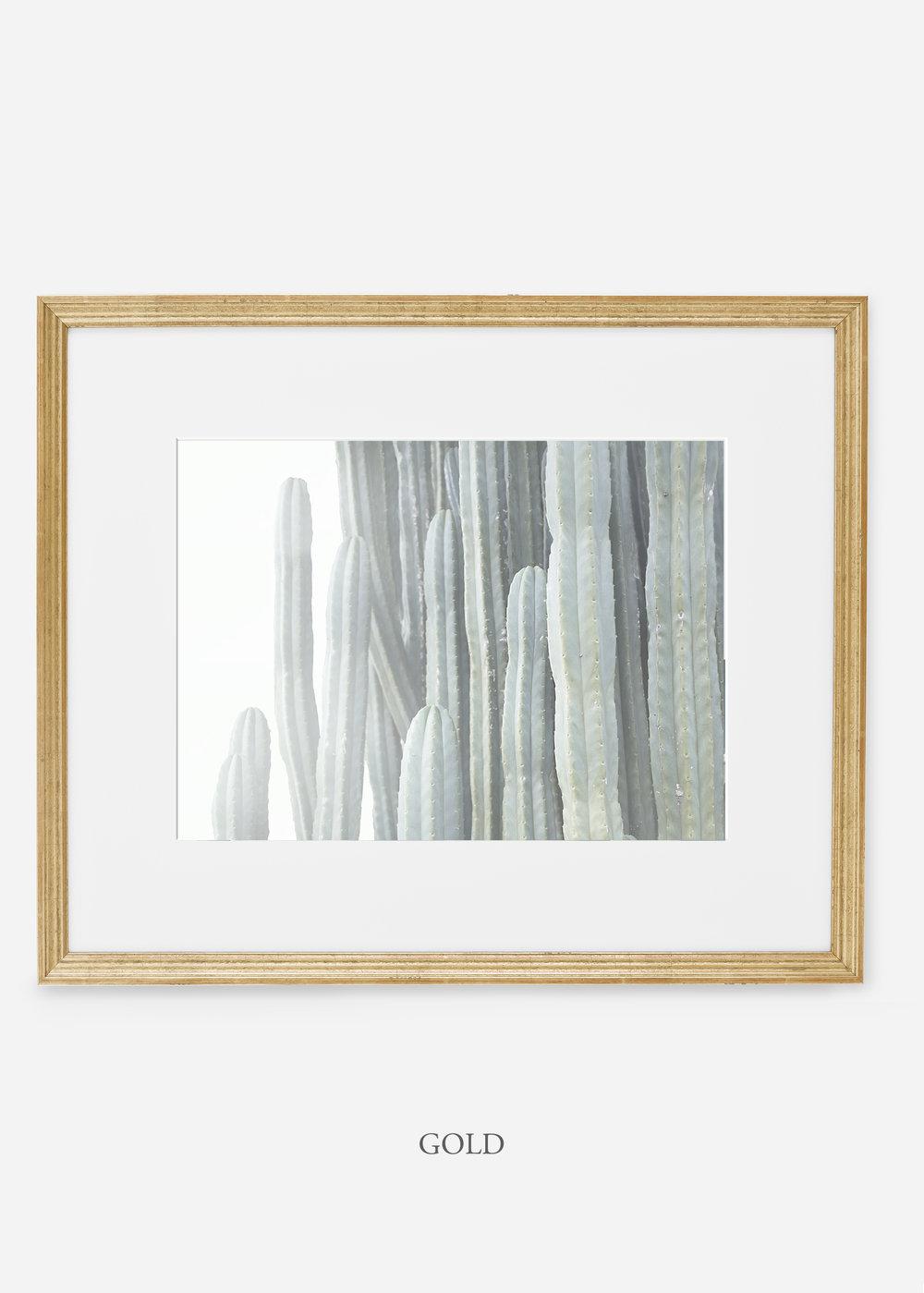 WilderCalifornia_goldframe__Cactus_Art_Photography_interiordesign_white_bohemian_neutral_photography_photo.jpg