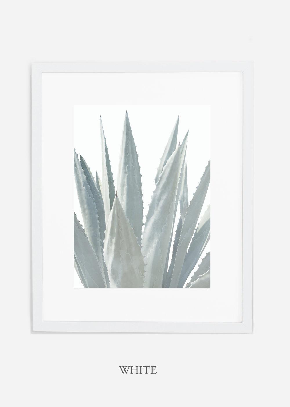 winterwhite_whiteframe_WinterWhiteAgaveNo.3_agave_prints_interiordesign_art_homedecor_bohemian_modern_minimal_photography_cactusphotography.jpg