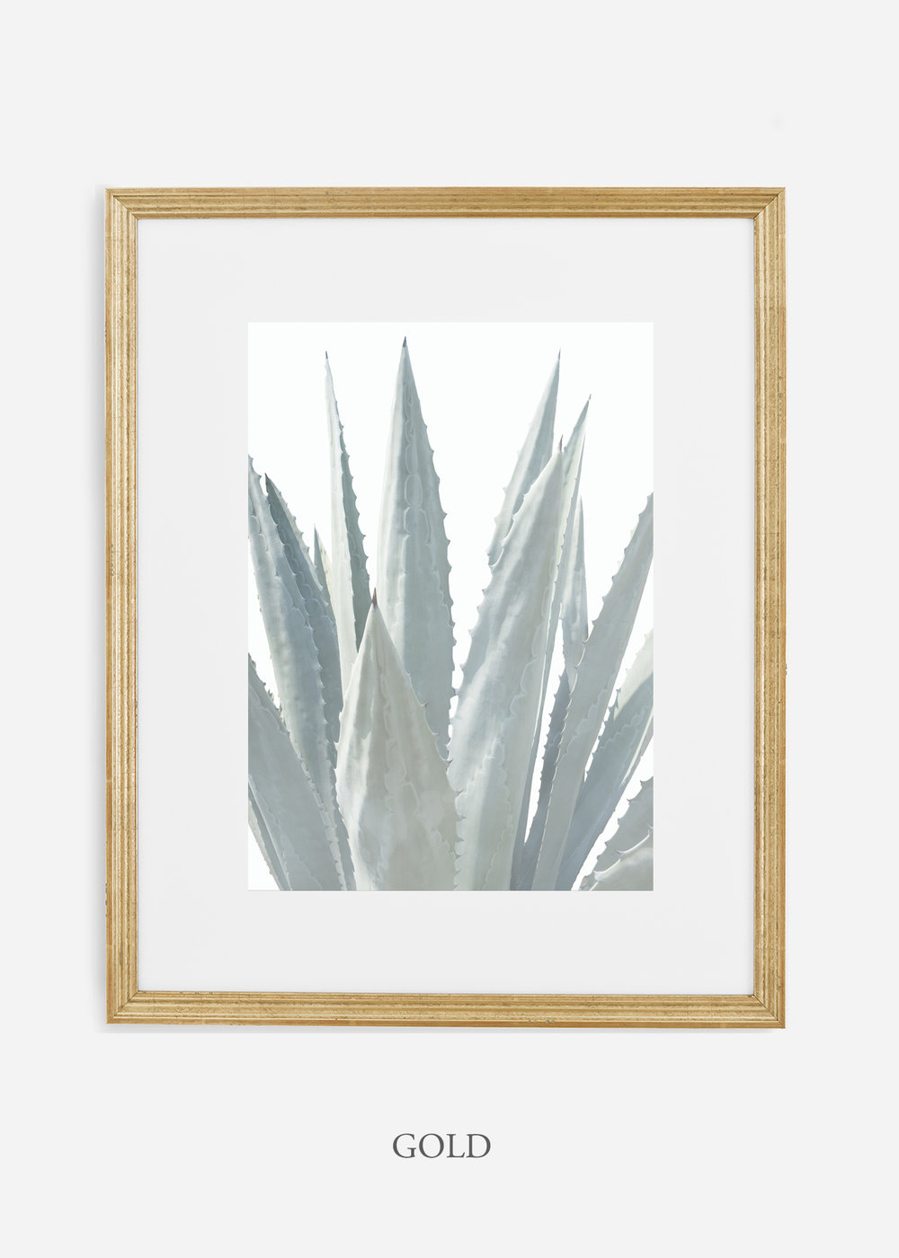 winterwhite_goldframe_WinterWhiteAgaveNo.3_agave_prints_interiordesign_art_homedecor_bohemian_modern_minimal_photography_cactusphotography.jpg