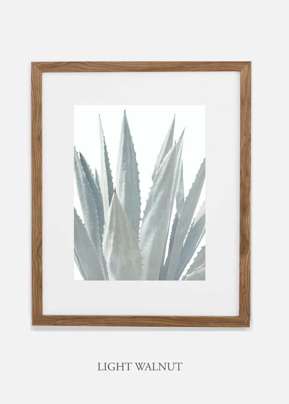 winterwhite_lightwalnutframe_WinterWhiteAgaveNo.3_agave_prints_interiordesign_art_homedecor_bohemian_modern_minimal_photography_cactusphotography.jpg