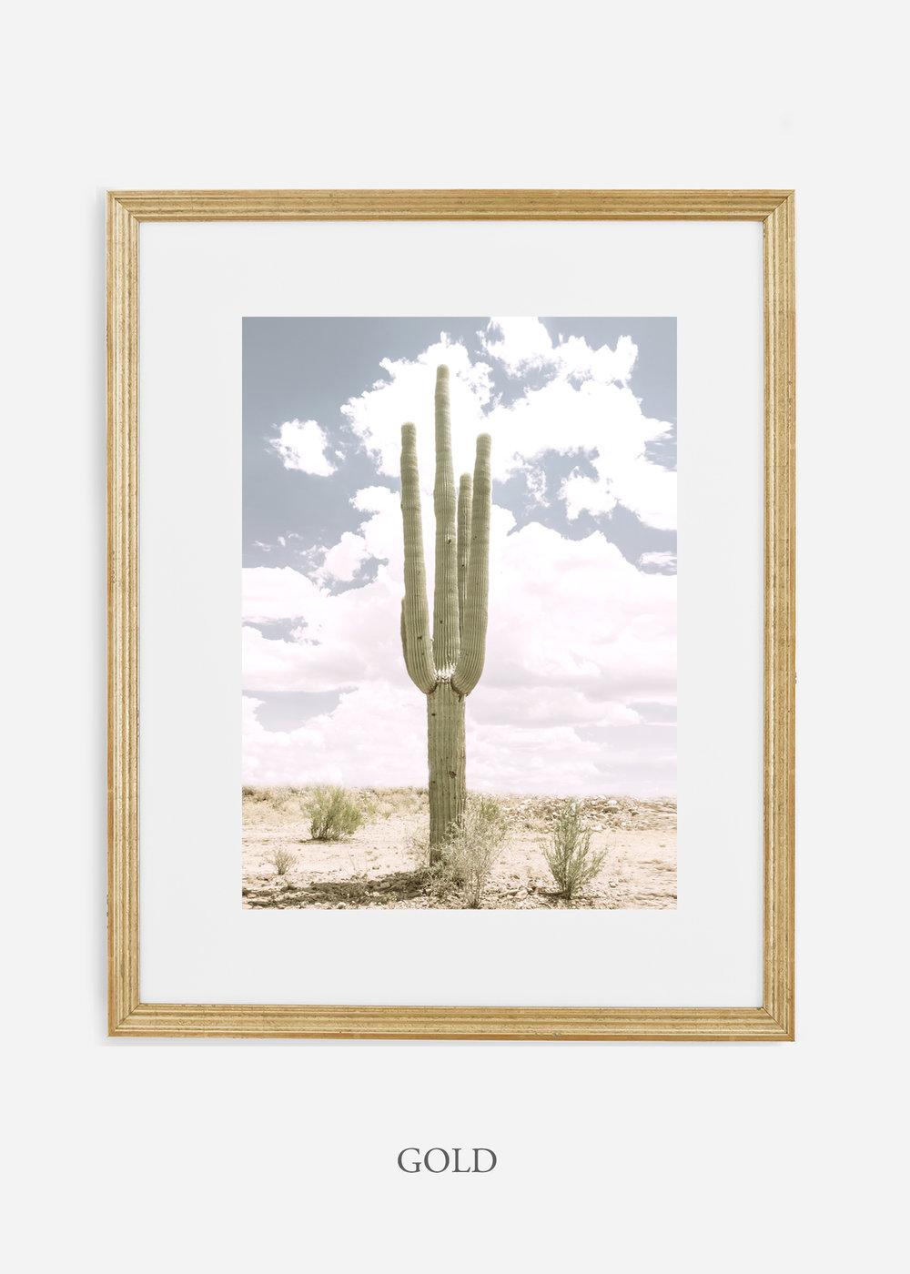 Desert_goldframe_SoloSaguaro_Southwest_Art_Photography_interiordesign_bohemian_cactusart.jpg