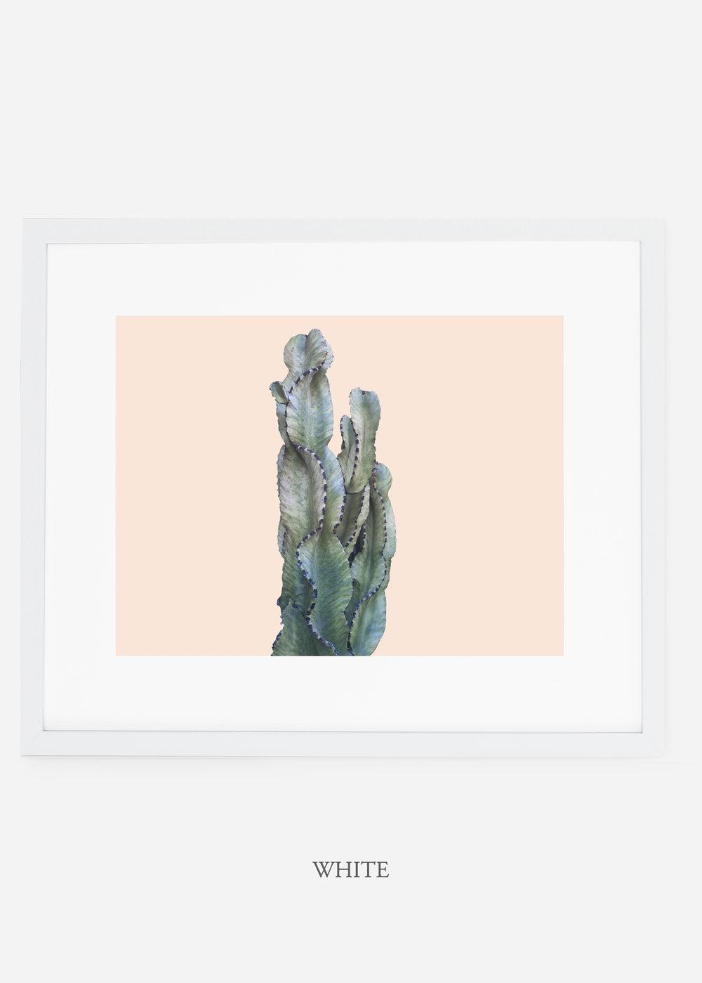 WilderCalifornia_whiteframe_top_gallery__Cactus_Art_Photography_interiordesign_white_bohemian_neutral_photography_photo.jpg