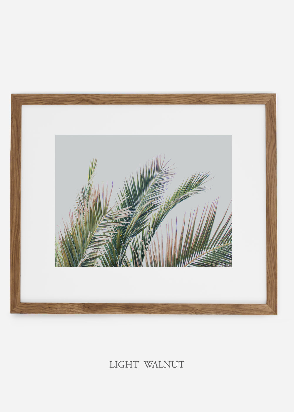 interiordesign_lightwalnutframe_art_tropical_palmtree_StormyGrayPalm.jpg