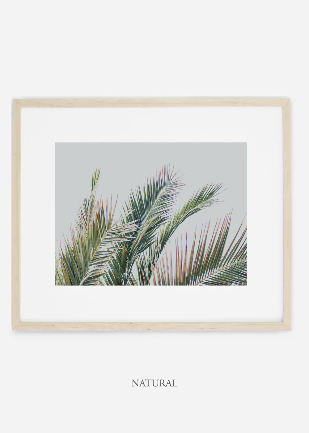 interiordesign_naturalframe_art_tropical_palmtree_StormyGrayPalm.jpg