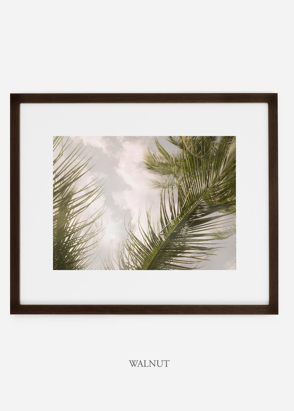interiordesign_walnutframe_AiryPalmTreeNo.1_art_tropical_palmtree_StormyGrayPalm.jpg