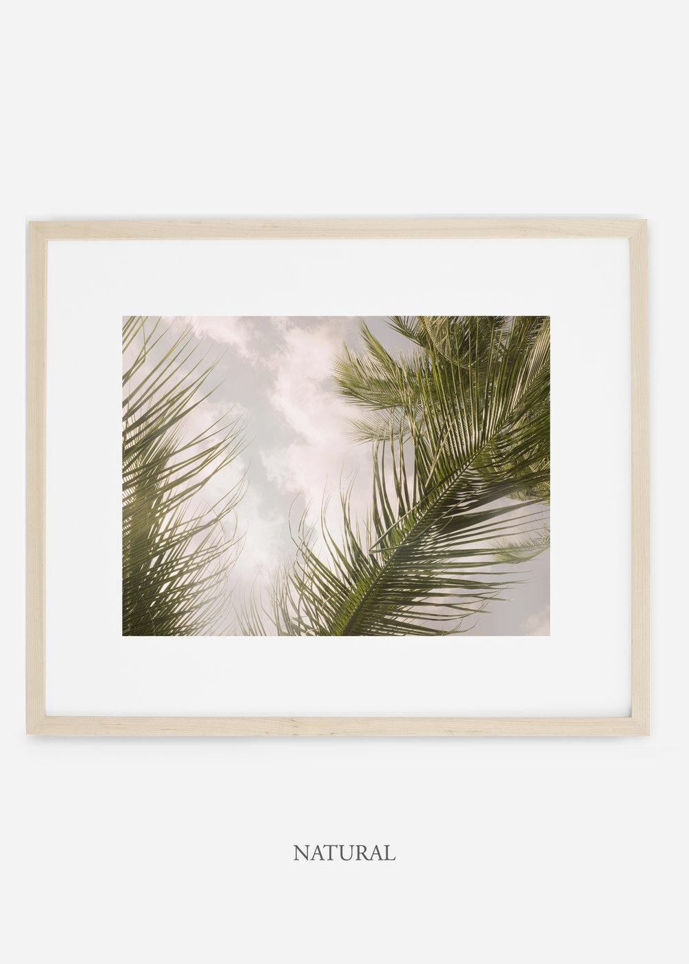 interiordesign_naturalframe_AiryPalmTreeNo.1_art_tropical_palmtree_StormyGrayPalm.jpg