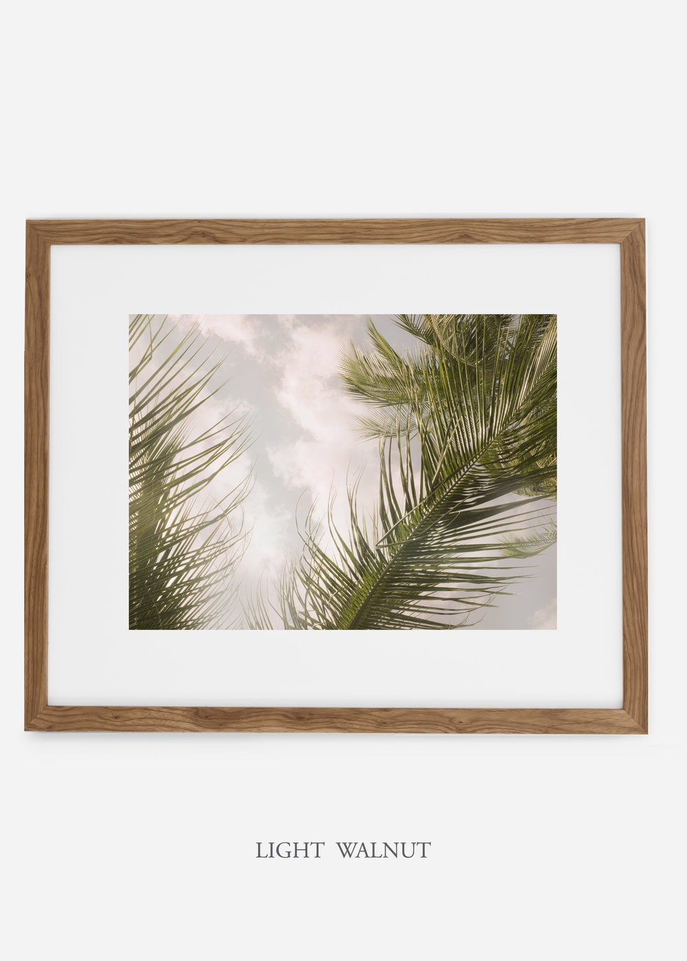interiordesign_lightwalnutframe_AiryPalmTreeNo.1_art_tropical_palmtree_StormyGrayPalm.jpg