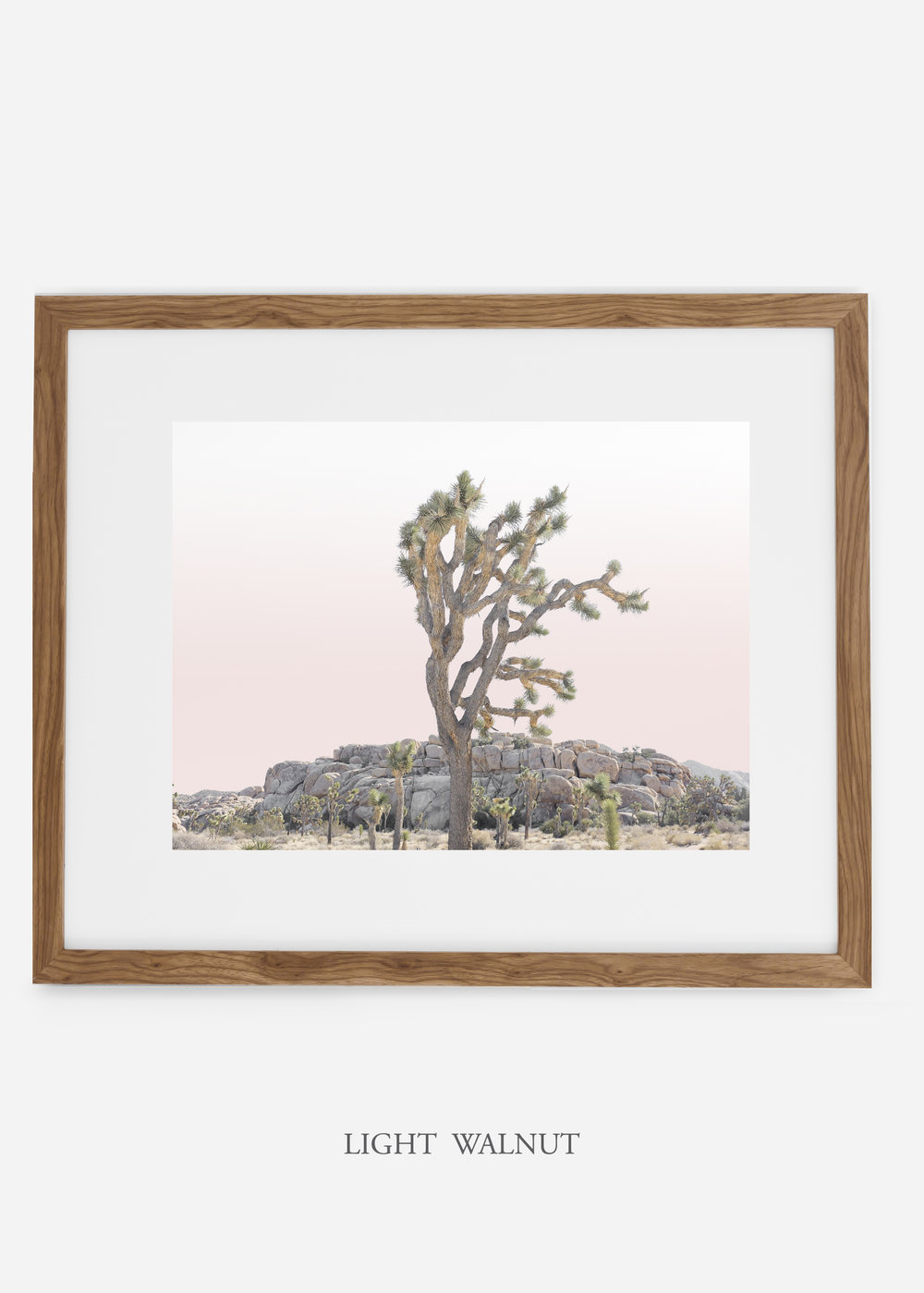 JoshuaTree_lightwalnutframe_No.8_interiordesign_cactusprint_art.jpg