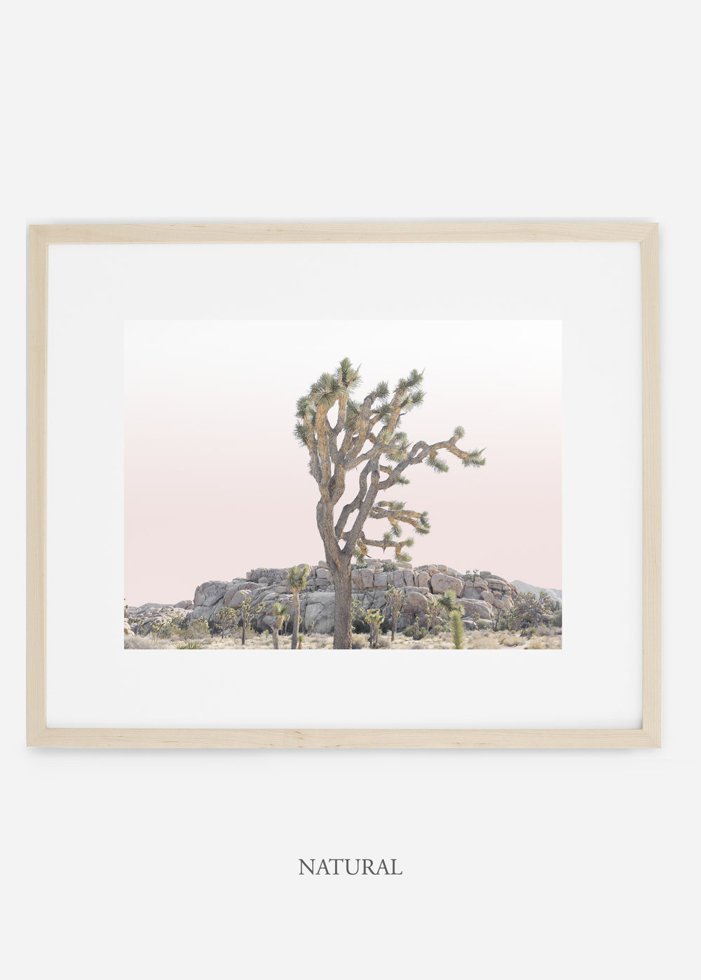 JoshuaTree_naturalframe_No.8_interiordesign_cactusprint_art.jpg