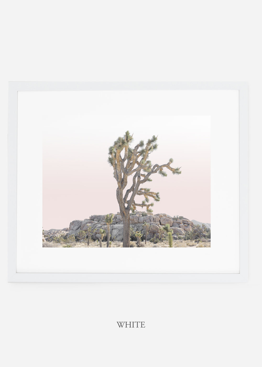 JoshuaTree_whiteframe_No.8_interiordesign_cactusprint_art.jpg