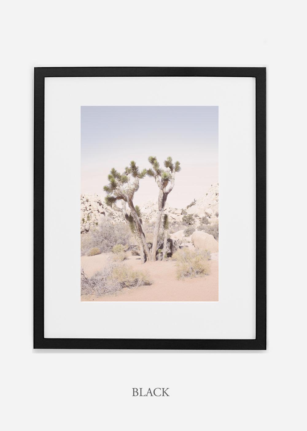 JoshuaTree_blackframe__No.2_interiordesign_cactusprint_art.jpg