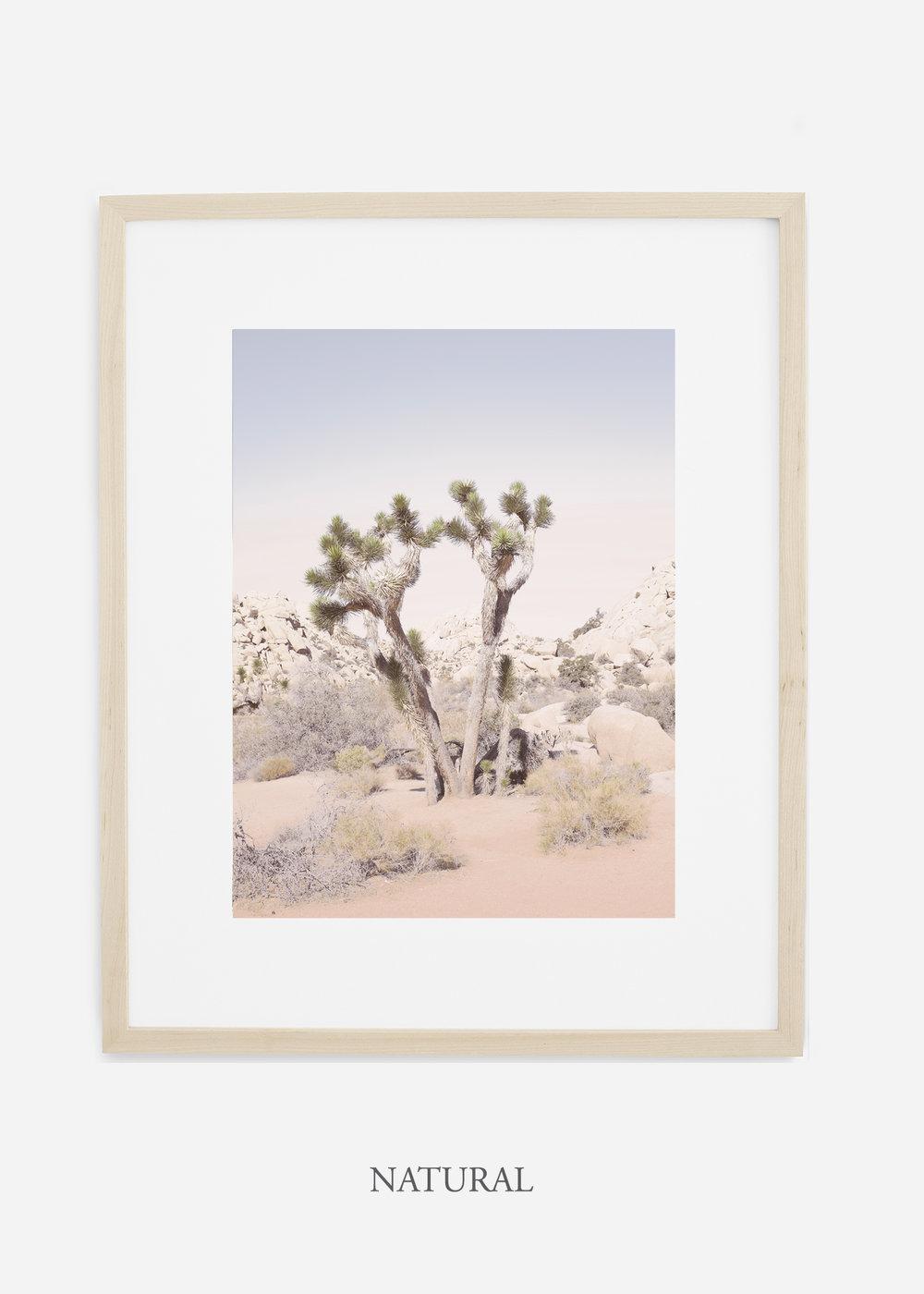 JoshuaTree_naturalframe__No.2_interiordesign_cactusprint_art.jpg