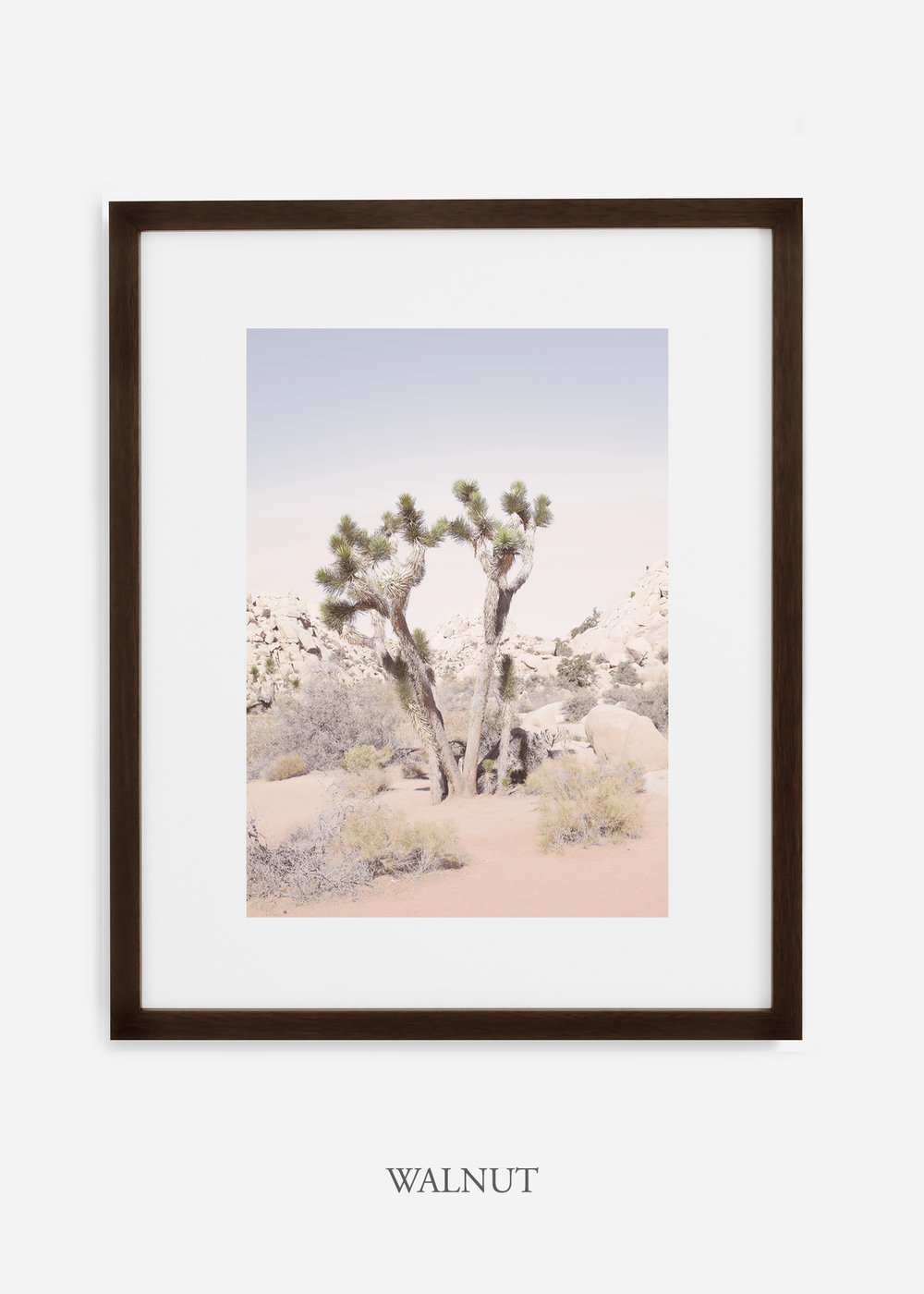 JoshuaTree_walnutframe__No.2_interiordesign_cactusprint_art.jpg
