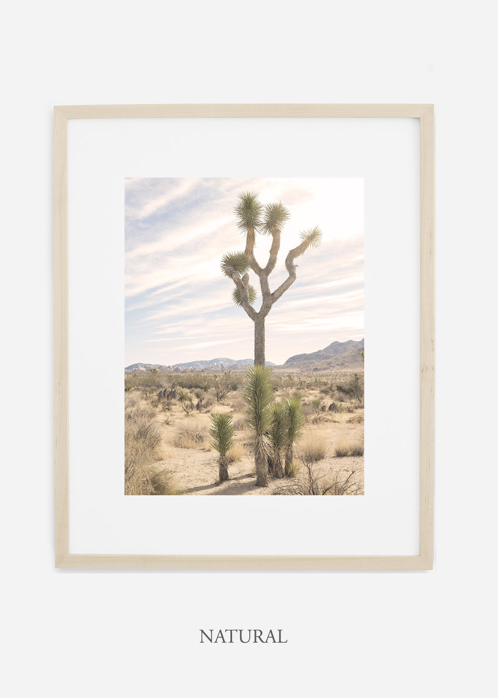 JoshuaTree_naturalframe__No.7_interiordesign_cactusprint_art.jpg