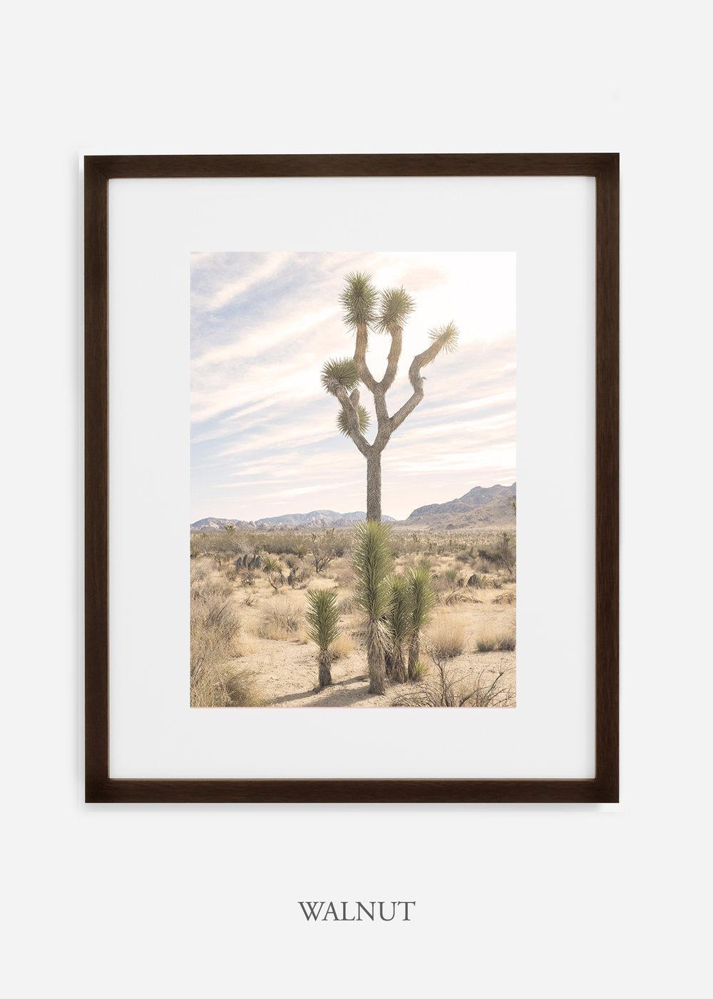 JoshuaTree_walnutframe__No.7_interiordesign_cactusprint_art.jpg