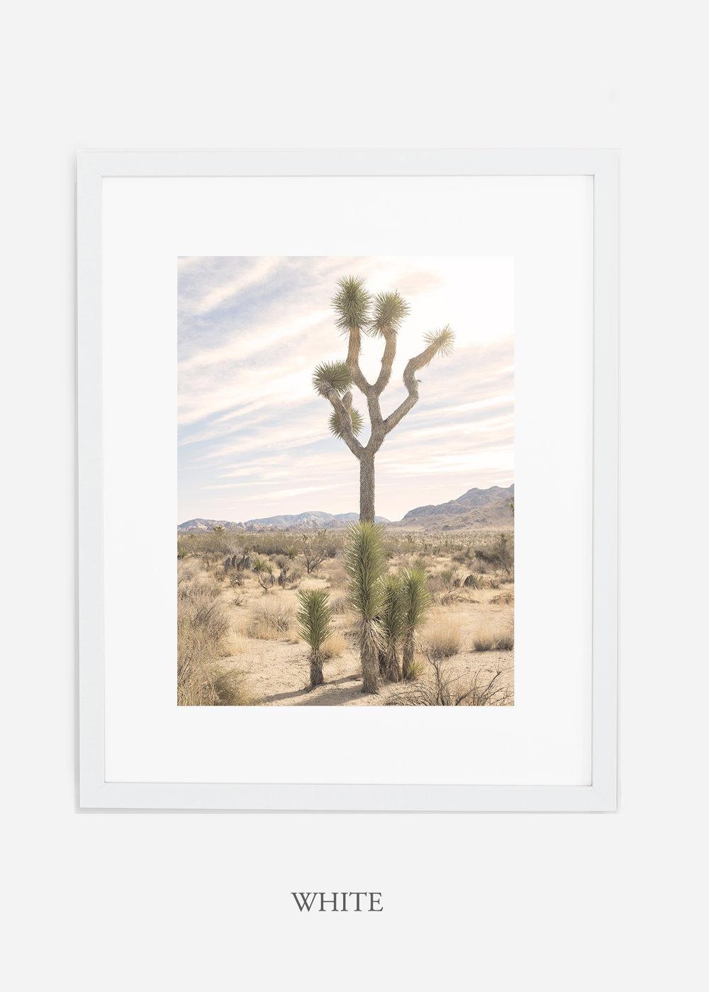 JoshuaTree_whiteframe__No.7_interiordesign_cactusprint_art.jpg
