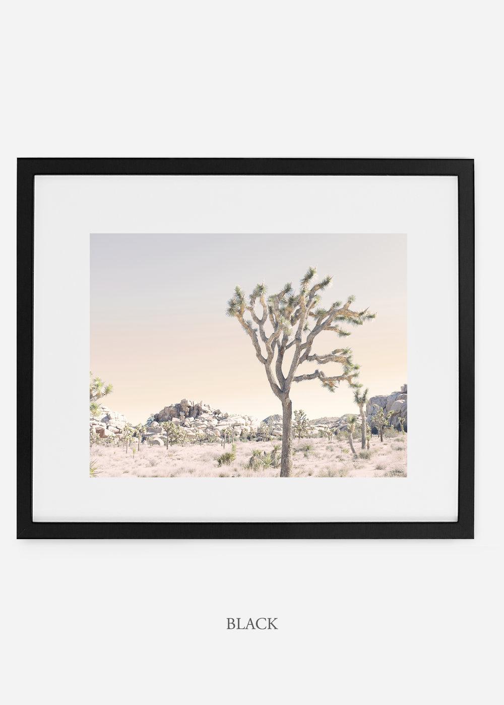 WilderCalifornia_blackframe_JoshuaTree_No.3_interiordesign_prints_art.jpg
