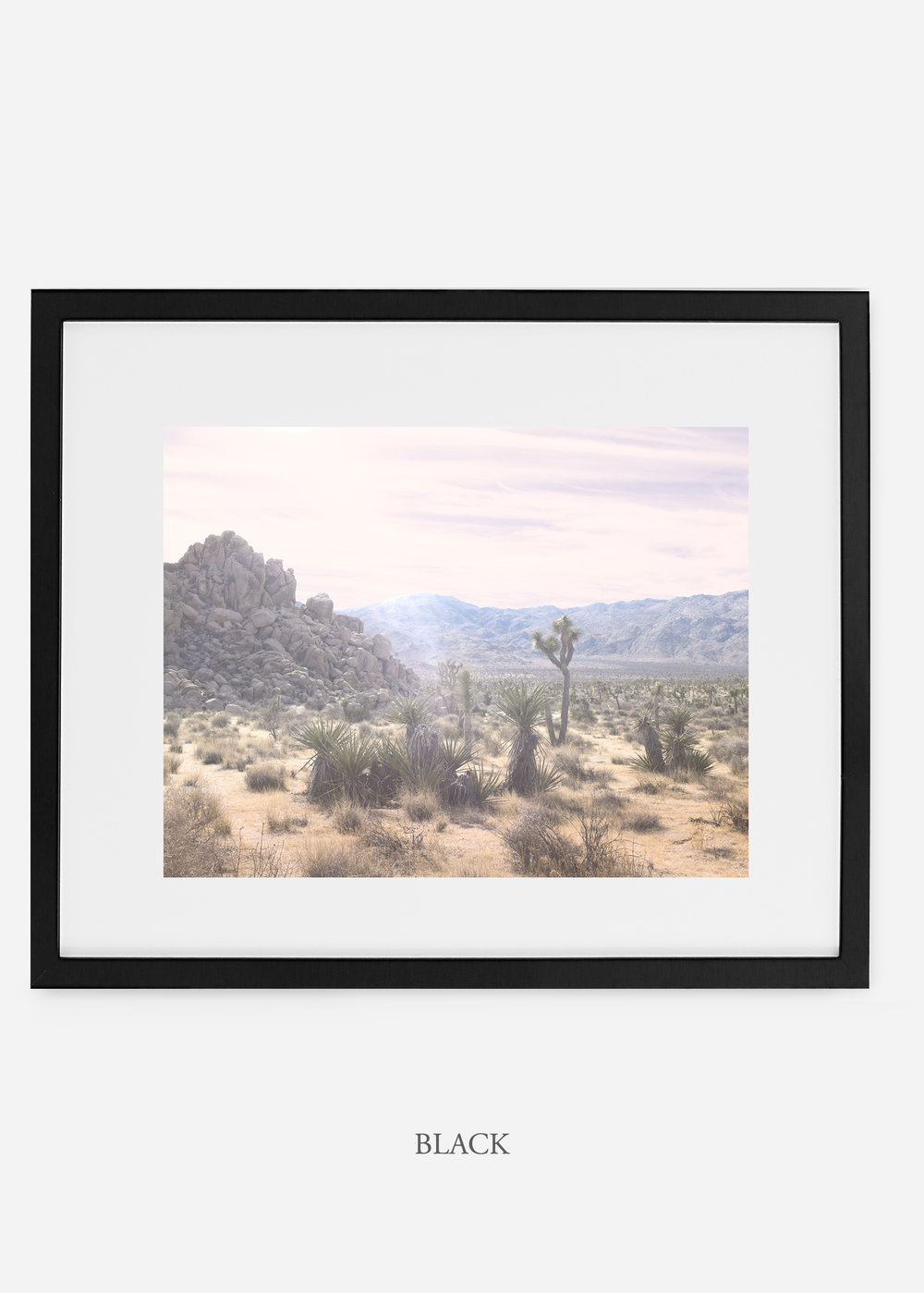 WilderCalifornia_blackframe_JoshuaTree_No.9_interiordesign_prints_art.jpg