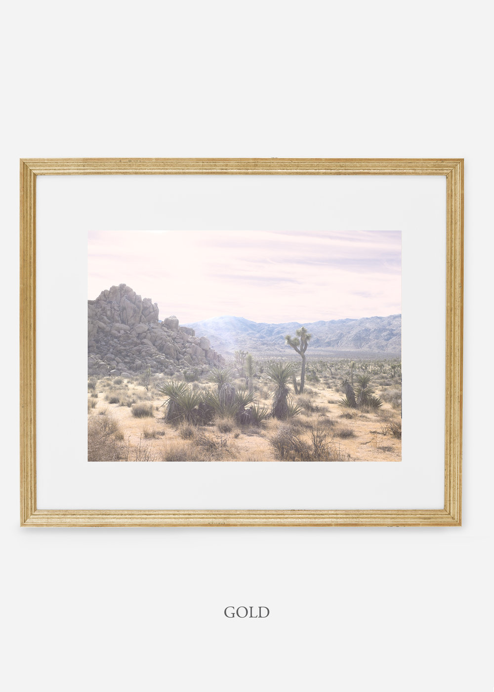WilderCalifornia_goldframe_JoshuaTree_No.9_interiordesign_prints_art.jpg