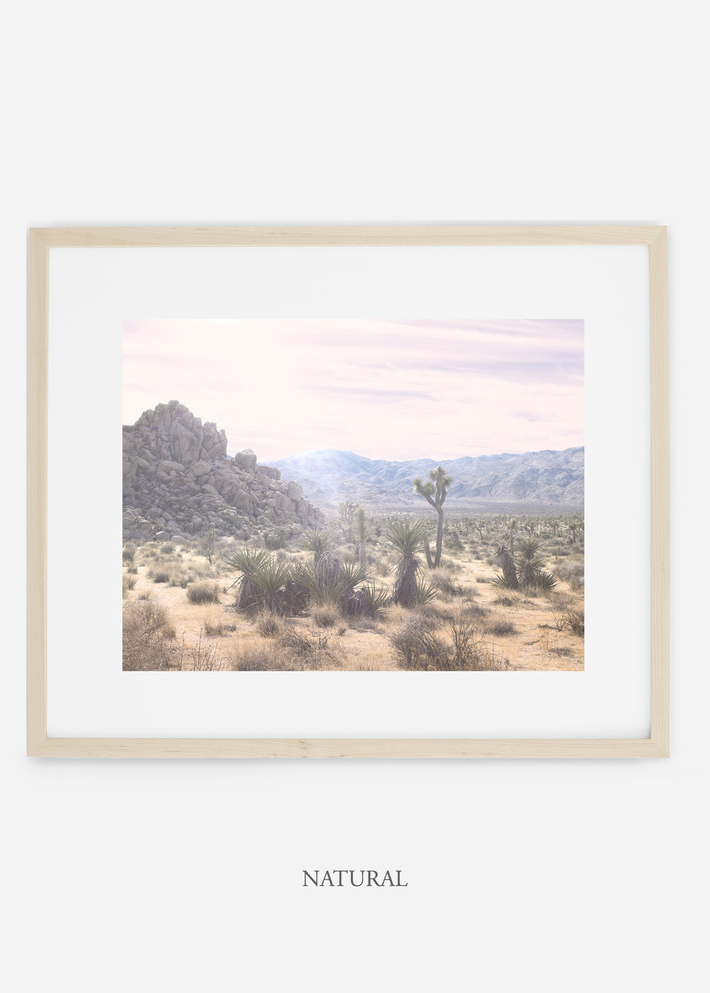 WilderCalifornia_naturalframe_JoshuaTree_No.9_interiordesign_prints_art.jpg