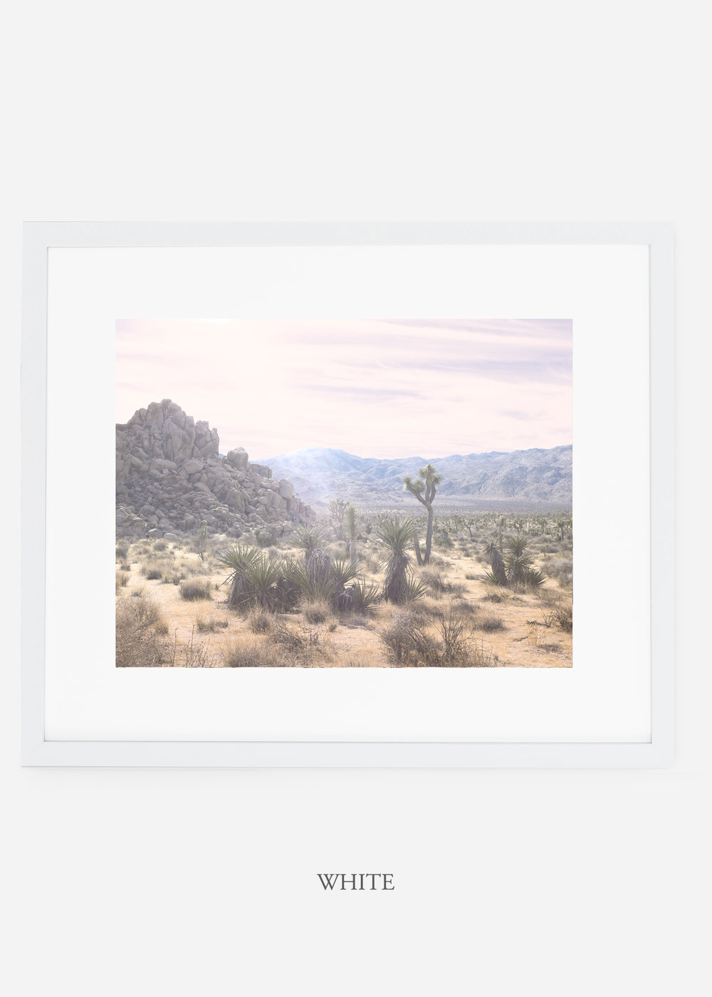 WilderCalifornia_whiteframe_JoshuaTree_No.9_interiordesign_prints_art.jpg