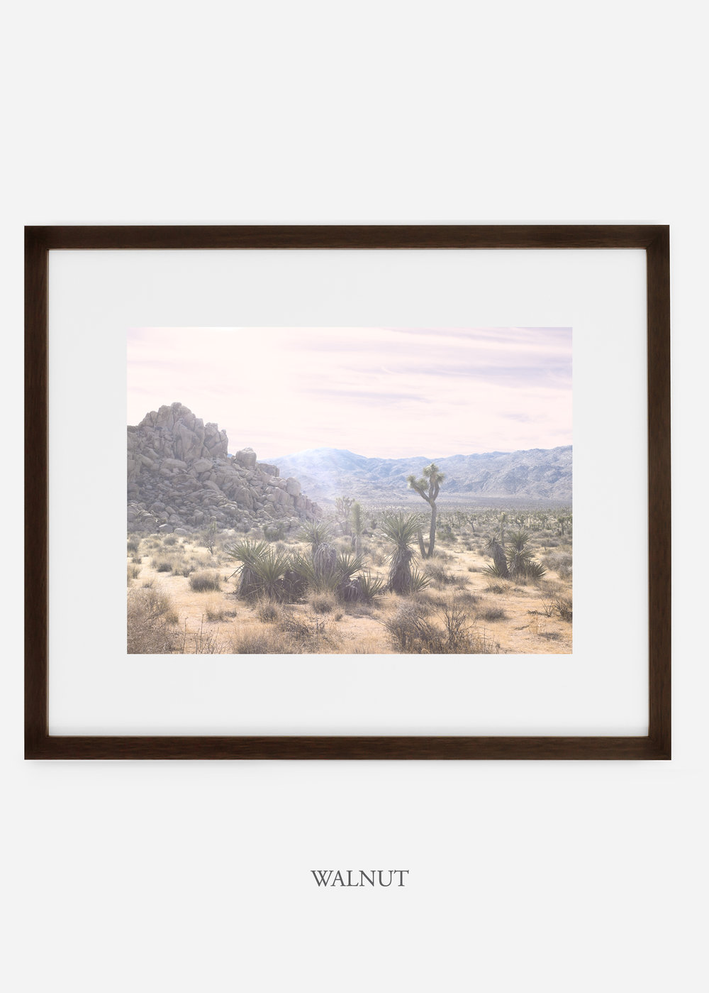 WilderCalifornia_walnutframe_JoshuaTree_No.9_interiordesign_prints_art.jpg