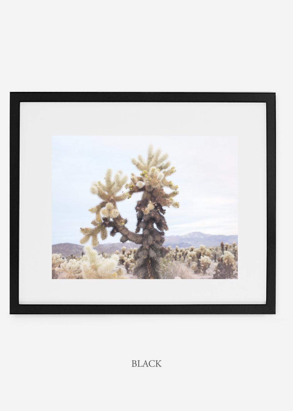 JoshuaTree_blackframe__No.10_interiordesign_cactusprint_art.jpg