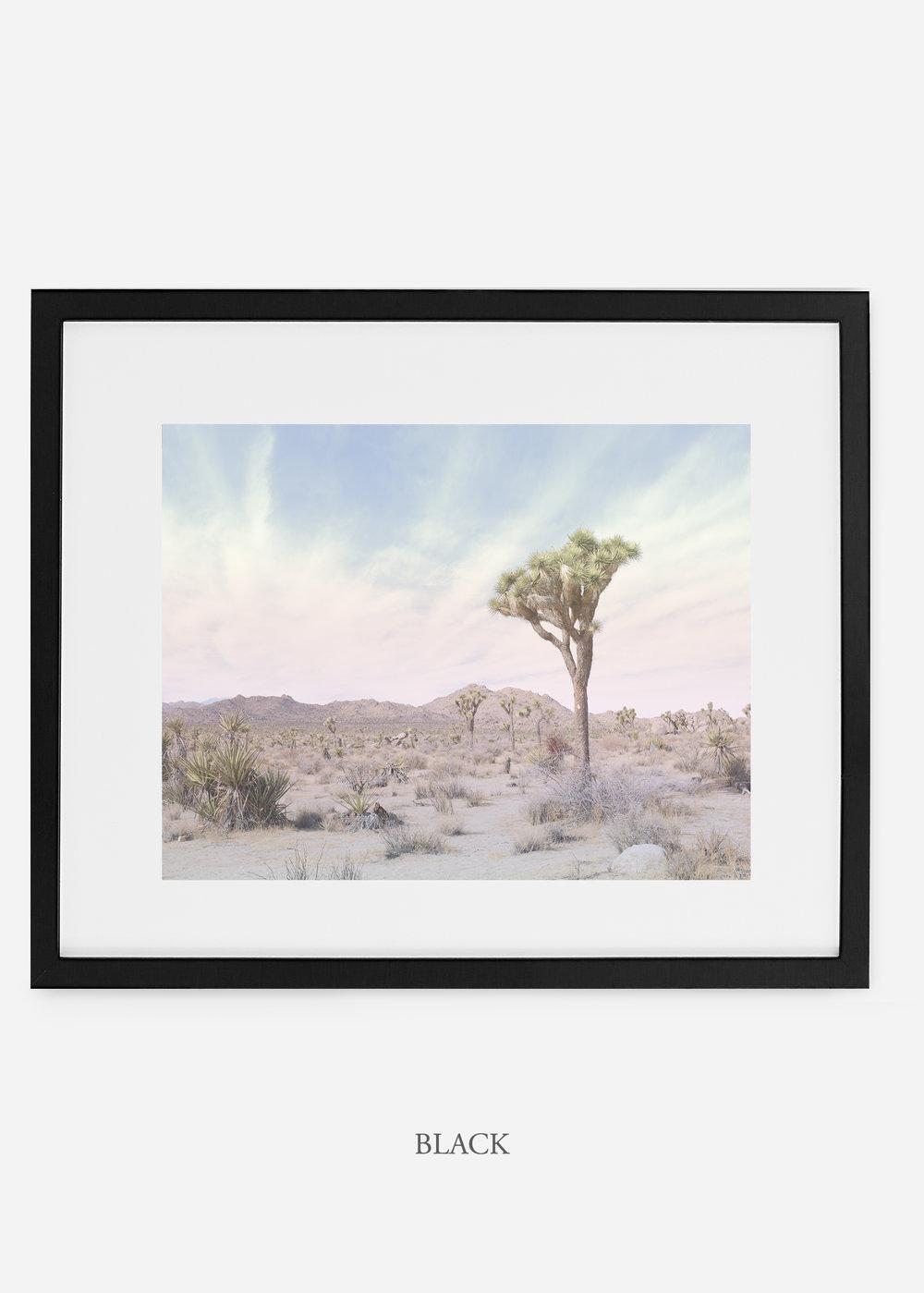 WilderCalifornia_black_JoshuaTree_No.13_interiordesign_prints_art.jpg