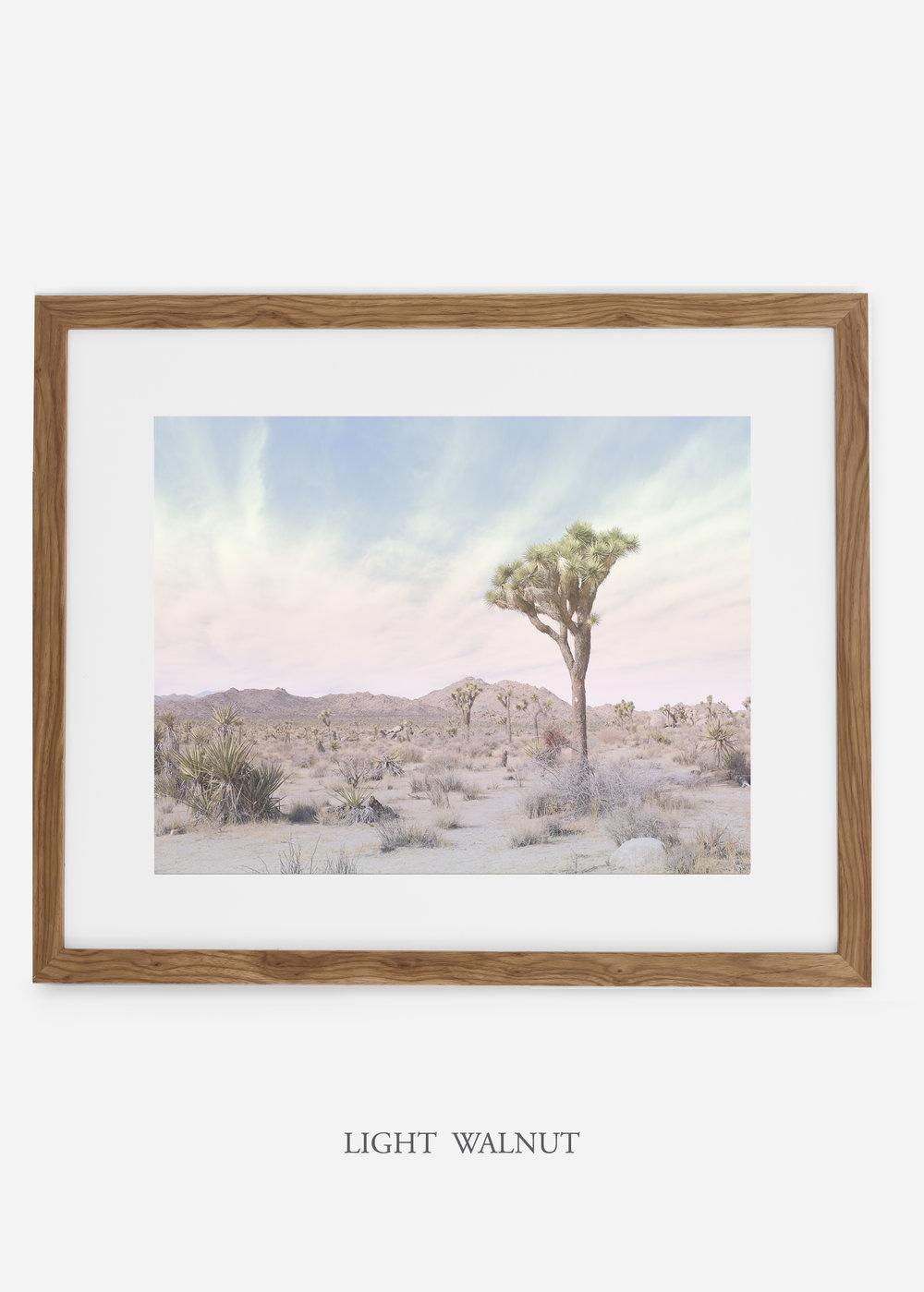 WilderCalifornia_lightwalnut_JoshuaTree_No.13_interiordesign_prints_art.jpg