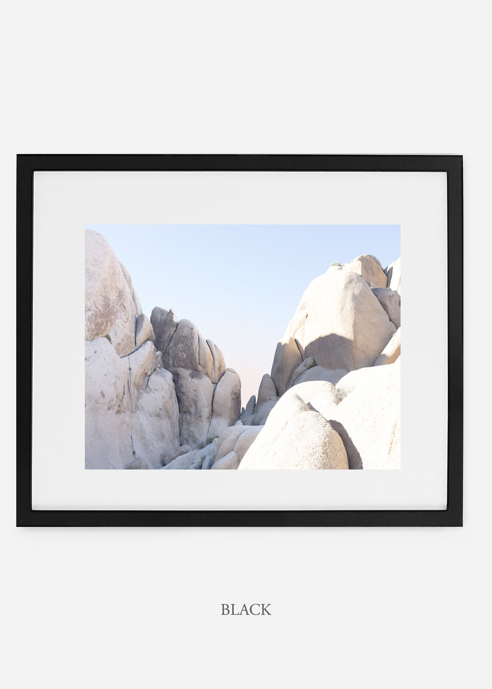 WilderCalifornia_black_JoshuaTree_No.18_interiordesign_prints_art.jpg