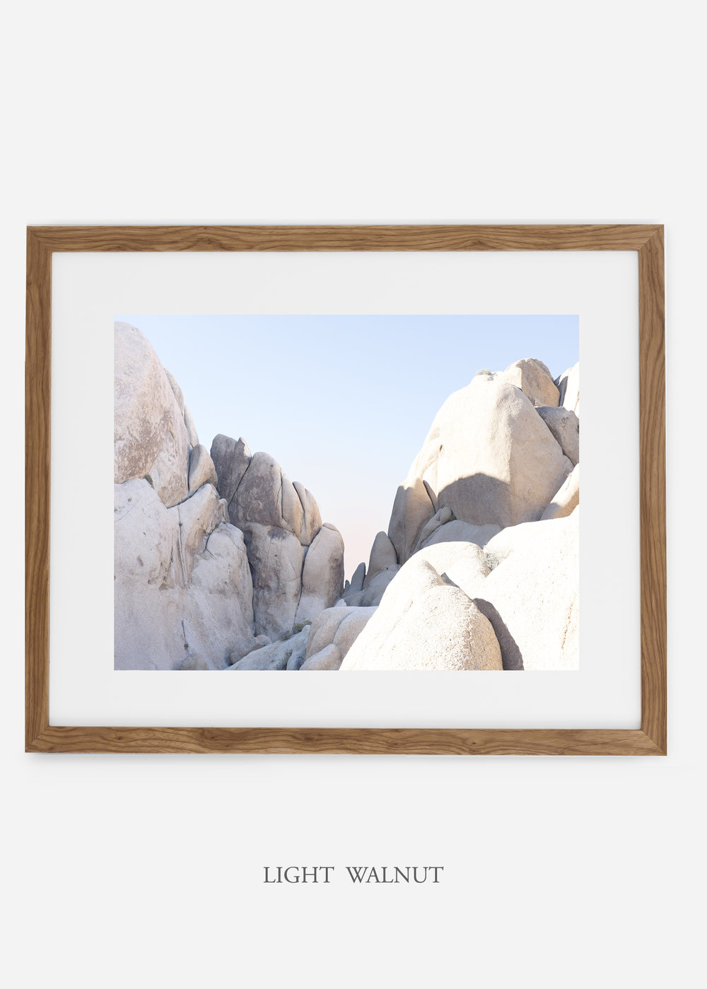 WilderCalifornia_lightwalnut_JoshuaTree_No.18_interiordesign_prints_art.jpg